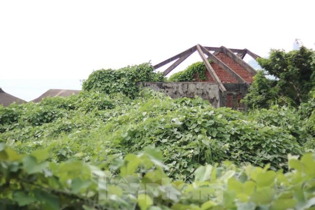 Cận cảnh những dự án 'băm nát' bán đảo Sơn Trà bị bỏ hoang ảnh 7