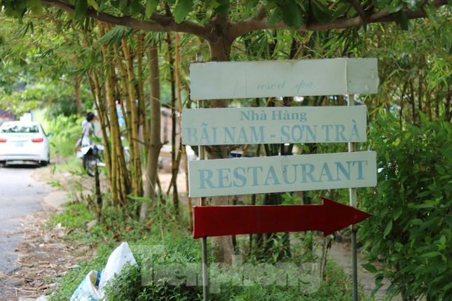 Cận cảnh những dự án 'băm nát' bán đảo Sơn Trà bị bỏ hoang ảnh 13