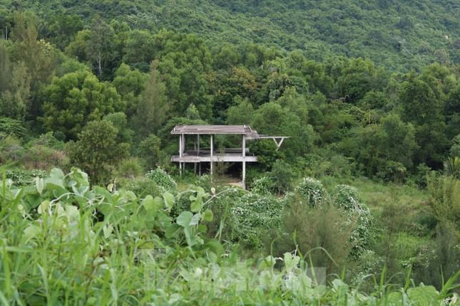 Cận cảnh những dự án 'băm nát' bán đảo Sơn Trà bị bỏ hoang ảnh 11