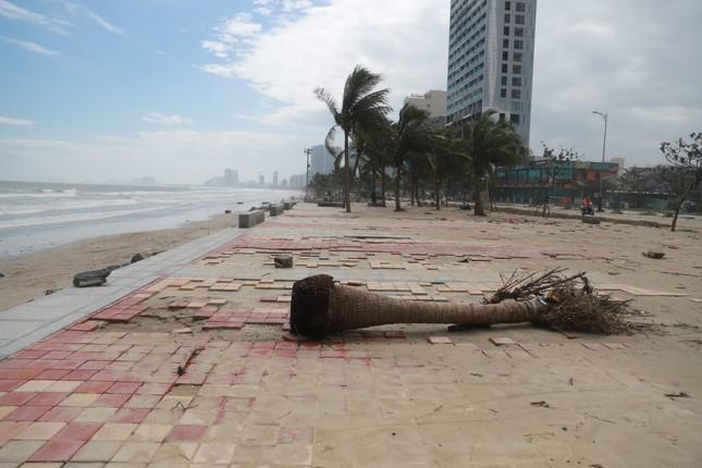 Bờ sông, bãi biển Đà Nẵng tan hoang sau bão số 9 ảnh 6