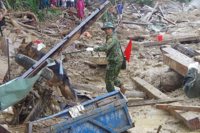 Chó nghiệp vụ xác định nhiều vị trí nghi ngờ có thi thể mất tích ở Trà Leng ảnh 3