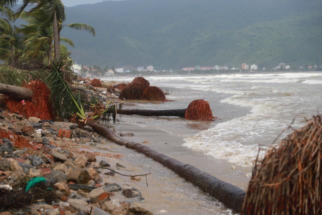 Bờ sông, bãi biển Đà Nẵng tan hoang sau bão số 9 ảnh 5