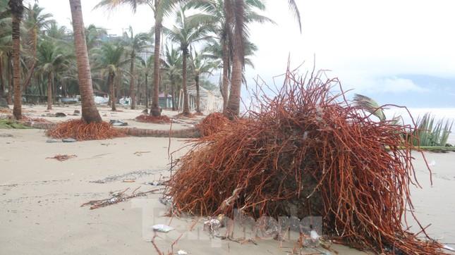 Bãi biển 'đẹp nhất hành tinh' tan hoang sau bão số 13 ảnh 14