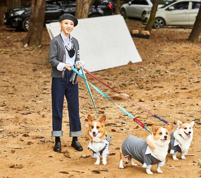 """Xuất hiện dàn """"boss cưng"""" sang chảnh của hội idol khi tham gia Đại hội thể thao K-Pop 2020 ảnh 4"""