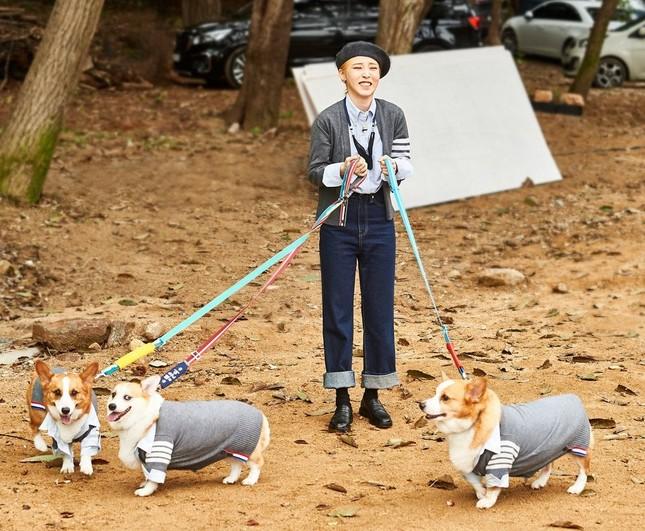 """Xuất hiện dàn """"boss cưng"""" sang chảnh của hội idol khi tham gia Đại hội thể thao K-Pop 2020 ảnh 3"""