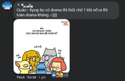 Cuộc chiến của fan quốc tế và netizen Hàn còn nóng hơn cả scandal lăng mạ của Irene ảnh 8