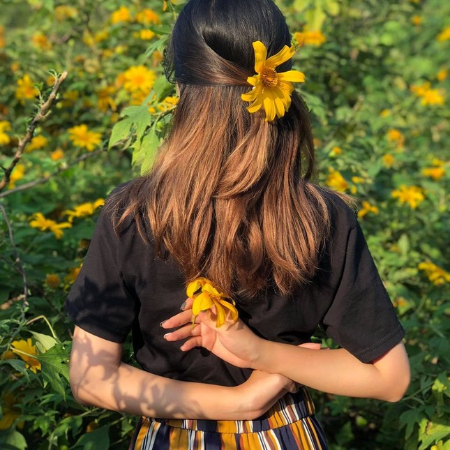 Team Hà Nội đâu cần đến Đà Lạt xa xôi, Ba Vì cũng sắp sửa bước vào mùa hoa dã quỳ rồi! ảnh 4