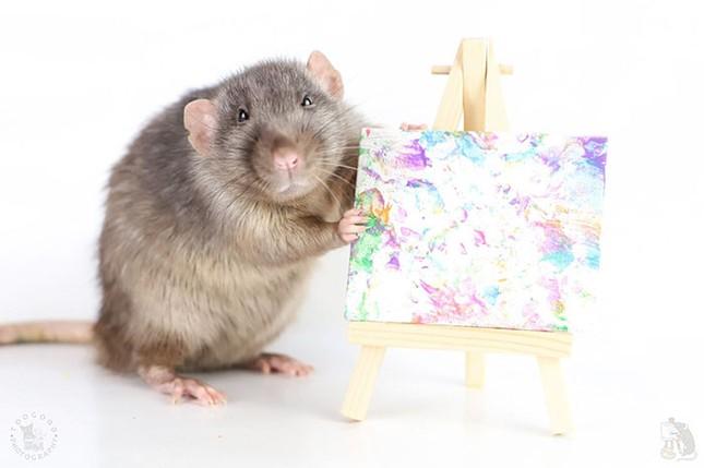 Trời ơi tin được không, tác giả của những bức tranh nghệ thuật này lại là một chú chuột ảnh 1