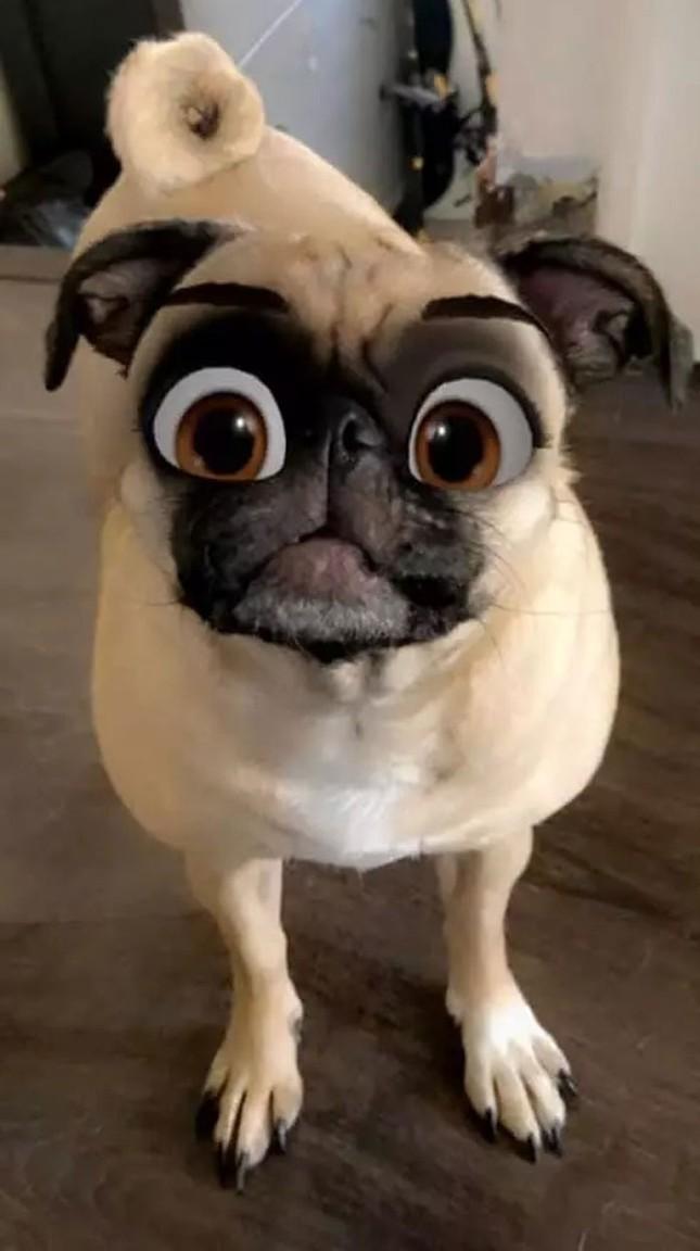 """Hiệu ứng cực đỉnh của Snapchat, biến boss nhà bạn thành """"ngôi sao"""" Disney trong chớp mắt ảnh 3"""