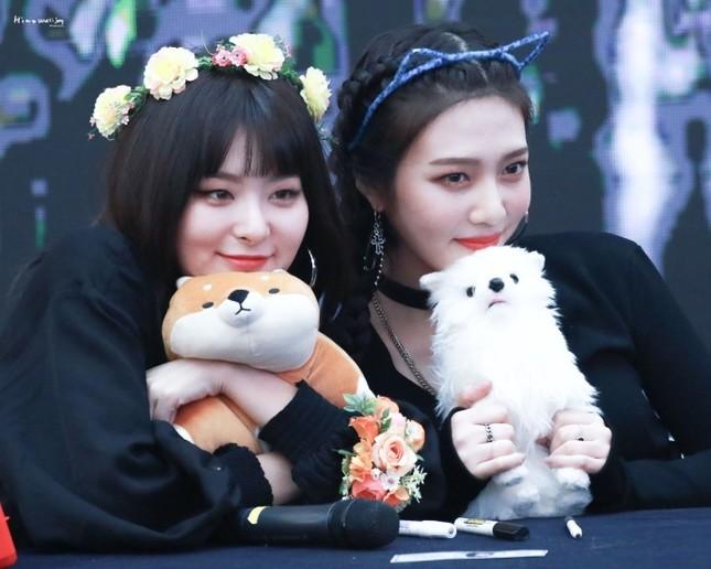 Joy và Seulgi (Red Velvet) bị nhiều người khó chịu vì một lý do không thể hiểu nổi ảnh 1