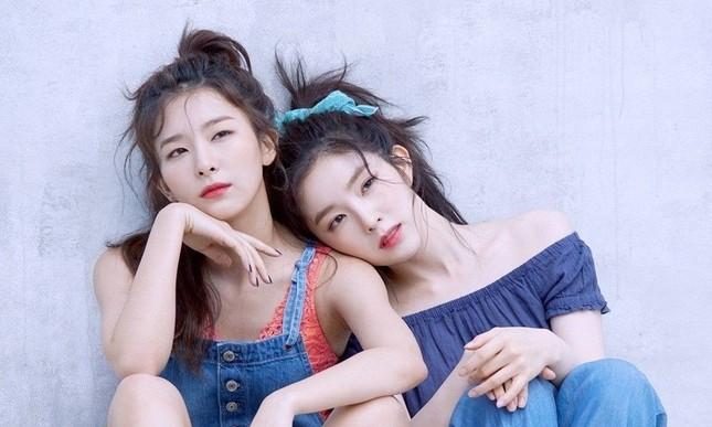 Nhóm nhỏ Irene - Seulgi vừa được khen logo quá đẹp đã bị nghi đạo nhái ảnh 3