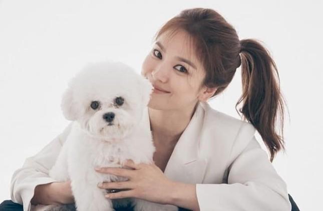 """Loạt ảnh này có gì lạ mà giúp Song Hye Kyo được khen """"vượt trội Kim Tae Hee, Son Ye Jin""""? ảnh 6"""