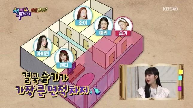"""Irene càng bị """"bóc phốt"""" chuyện ứng xử, Seulgi càng được khen về """"nhân cách vàng"""" ảnh 4"""