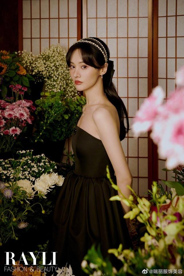 """Bị """"phong sát"""" tại quê nhà, có đường nào cho Trịnh Sảng tìm lại hào quang ở Hàn Quốc? ảnh 3"""