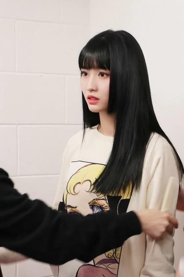 """""""Đu trend"""" tóc Hime rất muộn nhưng """"mỹ nữ 4000 năm"""" Cúc Tịnh Y lại được khen nhiều nhất ảnh 1"""