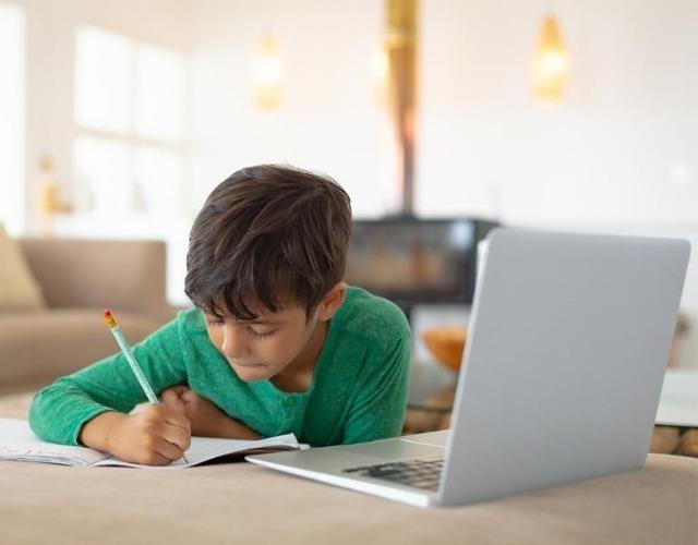 """Tranh cãi việc các trường tư cho học sinh lớp 1 học online: """"Chưa biết chữ học kiểu gì?"""" ảnh 3"""