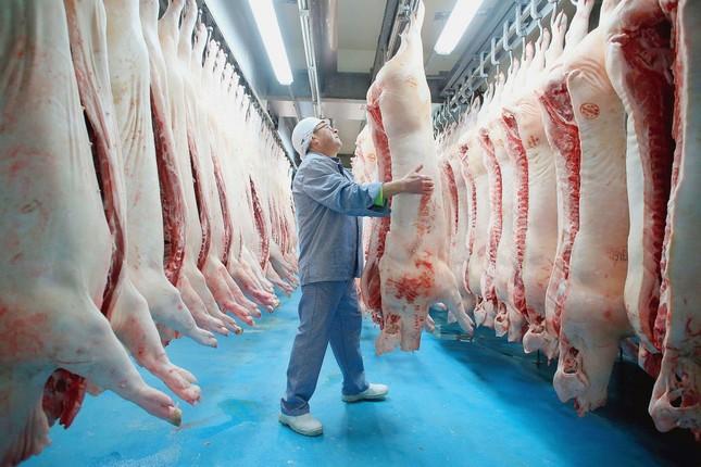 Chiến lược chăn nuôi đến năm 2030: Duy trì đàn lợn 29-30 triệu con ảnh 1