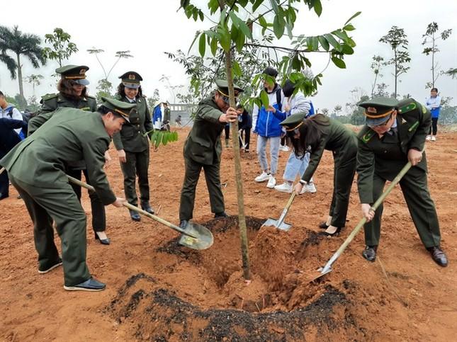 Phó Chủ tịch nước phát động 'Tết trồng cây' tại khu di tích Đền Hùng ảnh 1