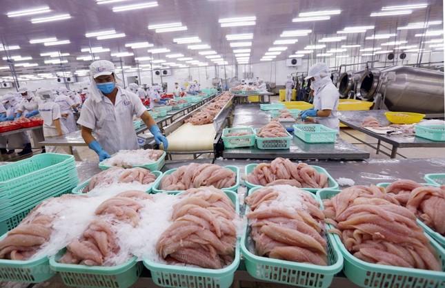 Xuất khẩu nông lâm thủy sản trong 3 tháng đạt hơn 9 tỷ USD, xuất siêu 2,9 tỷ USD ảnh 1
