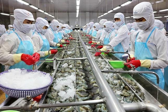 Xuất khẩu nông lâm thuỷ sản đạt kỷ lục trên 41 tỷ USD ảnh 2