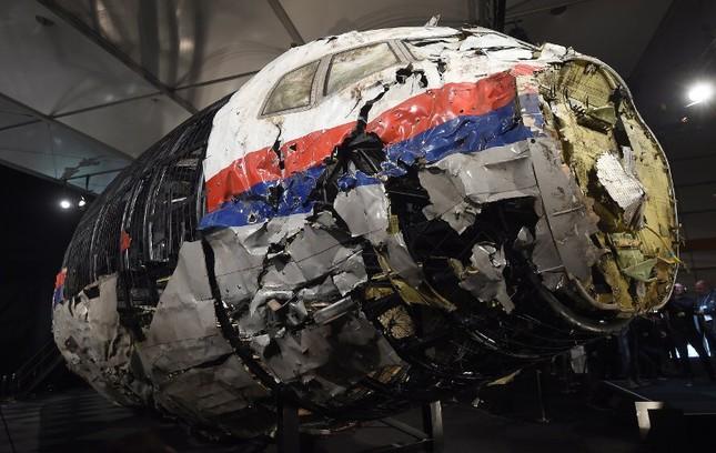 Thế giới tuần qua: Máy bay MH17 bị tên lửa Buk bắn hạ ảnh 4