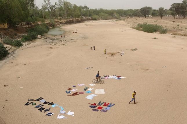 Thiếu nữ bên vườn đào lọt top ảnh ấn tượng nhất của Reuters ảnh 10