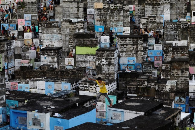 Thiếu nữ bên vườn đào lọt top ảnh ấn tượng nhất của Reuters ảnh 16