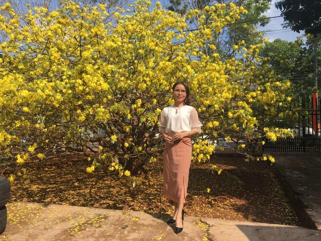 Nườm nượp du khách đến 'check-in' tại cây mai vàng 57 tuổi ở Đồng Nai ảnh 3