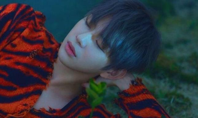 """Kang Daniel bị K-net đồng loạt mỉa mai """"tông điếc"""" dù liên tiếp thắng tại các show ca nhạc ảnh 2"""