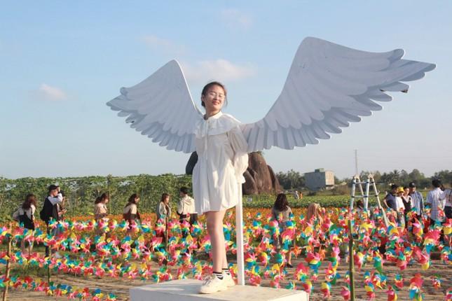Vườn hoa hướng dương 'khổng lồ' ở Quảng Ngãi hút khách ngày cận Tết ảnh 26