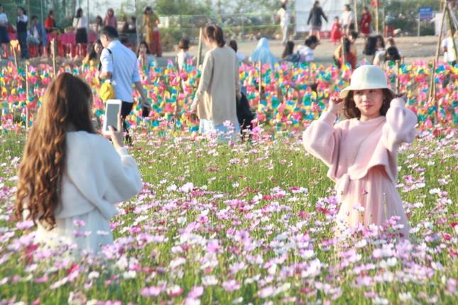 Vườn hoa hướng dương 'khổng lồ' ở Quảng Ngãi hút khách ngày cận Tết ảnh 16