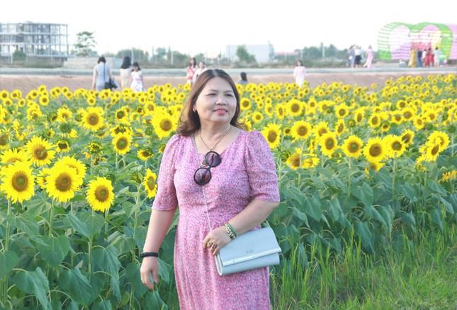 Vườn hoa hướng dương 'khổng lồ' ở Quảng Ngãi hút khách ngày cận Tết ảnh 15