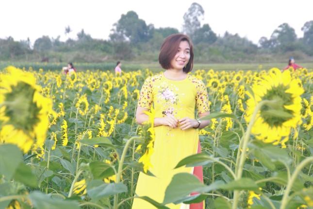 Vườn hoa hướng dương 'khổng lồ' ở Quảng Ngãi hút khách ngày cận Tết ảnh 13