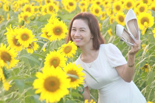 Vườn hoa hướng dương 'khổng lồ' ở Quảng Ngãi hút khách ngày cận Tết ảnh 12