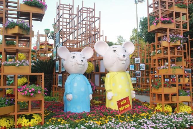 Người dân Quảng Ngãi rộn ràng 'check-in' với gia đình chuột ở công viên Ba Tơ ảnh 3