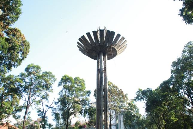 Ngày chớm hè, ngắm cánh chò nâu lả tả bay giữa Sài Gòn ảnh 12