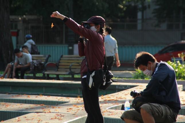 Ngày chớm hè, ngắm cánh chò nâu lả tả bay giữa Sài Gòn ảnh 15