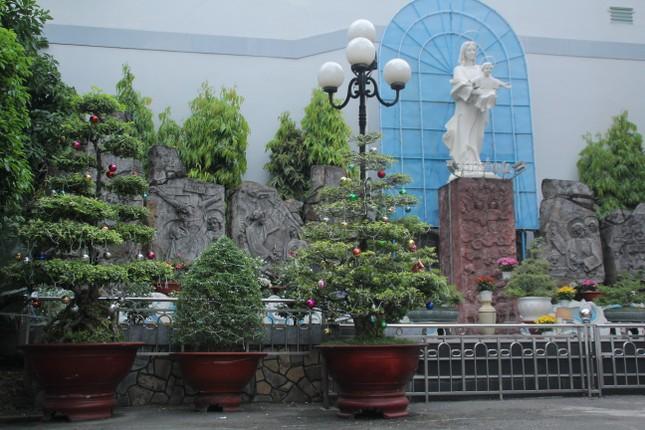 Xóm đạo Sài Gòn trang hoàng lung linh đón Giáng sinh ảnh 18