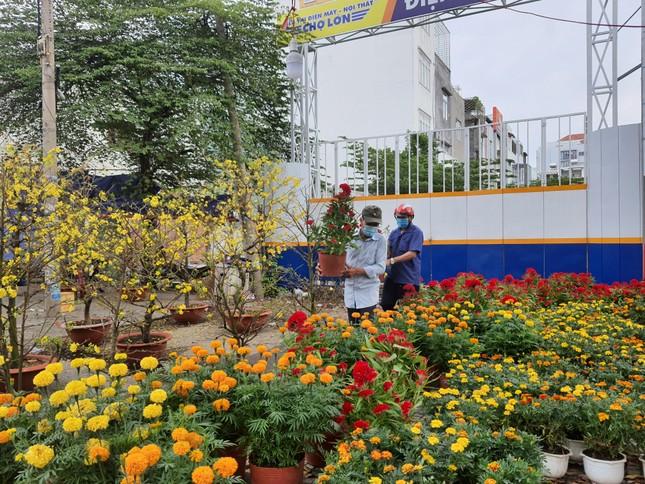 TPHCM: Chợ hoa Hồ Thị Kỷ 'xả hàng' kéo khách ảnh 19