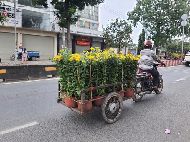 TPHCM: Chợ hoa Hồ Thị Kỷ 'xả hàng' kéo khách ảnh 23