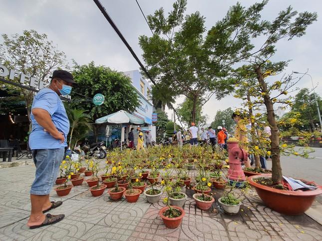TPHCM: Chợ hoa Hồ Thị Kỷ 'xả hàng' kéo khách ảnh 22