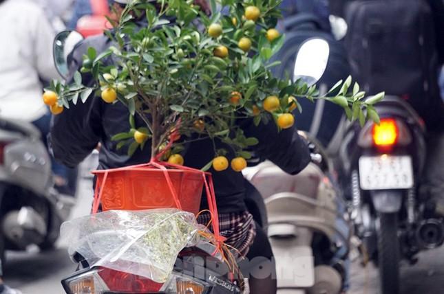 Người dân chở đào, quất về quê đón Tết, đường phố Hà Nội tê liệt ảnh 10
