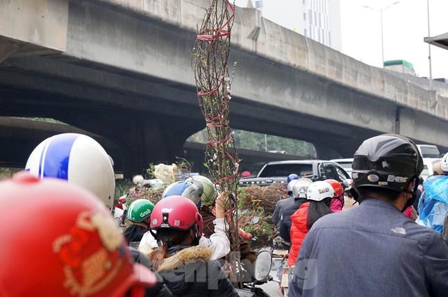 Người dân chở đào, quất về quê đón Tết, đường phố Hà Nội tê liệt ảnh 9