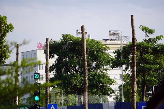 Hàng loạt cây xanh chết khô trên đường 'nghìn tỷ' ở Hà Nội ảnh 4