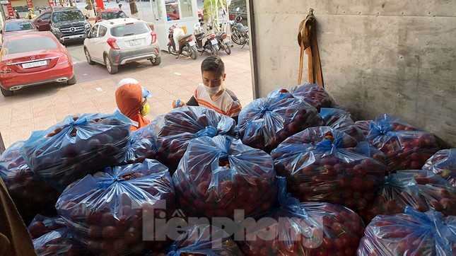 Nữ giáo viên cùng bạn giải cứu hàng chục tấn nông sản huyện Tiên Lãng ảnh 8