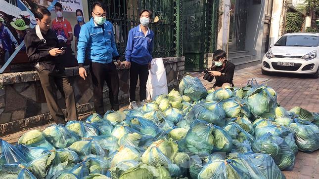 Nữ giáo viên cùng bạn giải cứu hàng chục tấn nông sản huyện Tiên Lãng ảnh 10