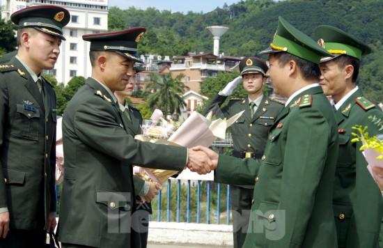 Bộ đội Biên phòng thu giữ 11,42 tấn ma túy, 445 khẩu súng ảnh 4