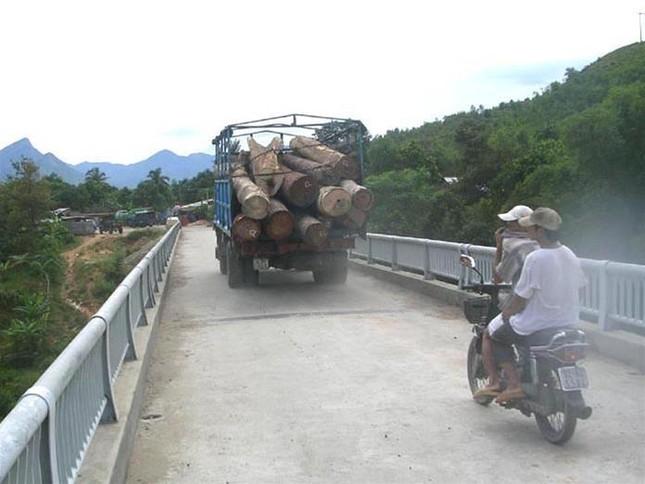 """Xe quá tải vẫn """"vắt kiệt"""" cầu Nông Sơn ảnh 1"""
