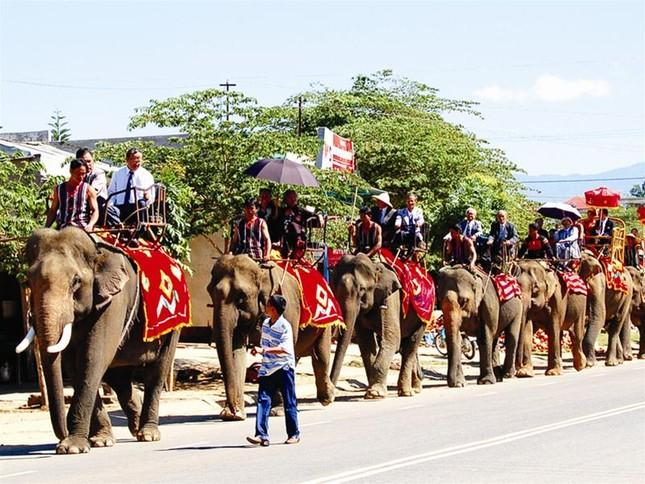 Lễ rước dâu độc nhất vô nhị bằng 20 chú voi ảnh 2