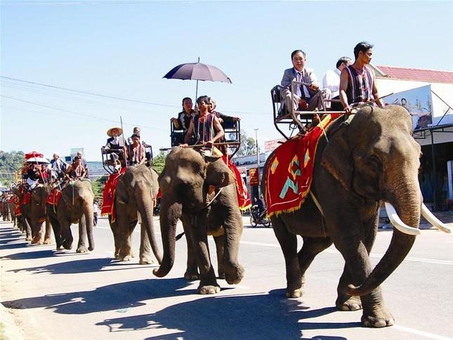 Lễ rước dâu độc nhất vô nhị bằng 20 chú voi ảnh 3